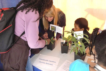 Sarah Wood shows students how to measure plant traits.