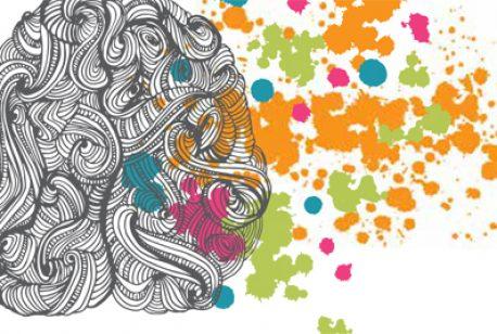 Lifetime of a Brain